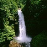 Palovit Waterfall Turkey Blacksea Tour