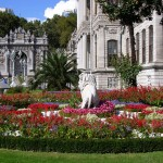 Istanbul Dolmabahce Palace Tour